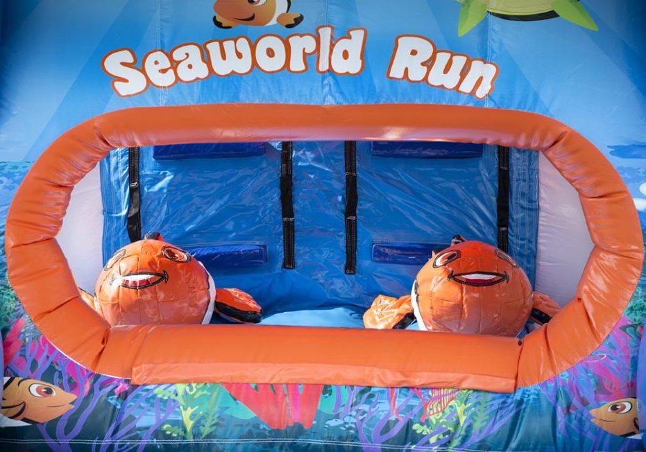 Mini Run Nemo